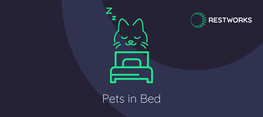 pets in bed